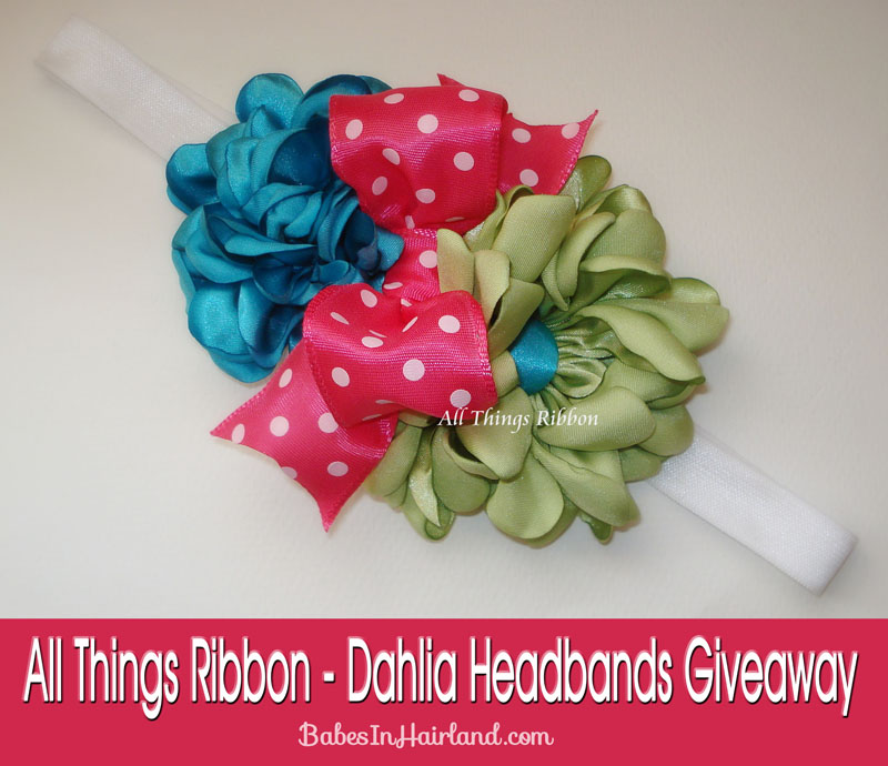 All Things Ribbon Giveaway (3)