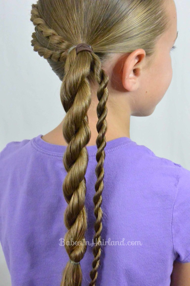 Rope Braids And Twisted Ponytail From Babesinhairland Com