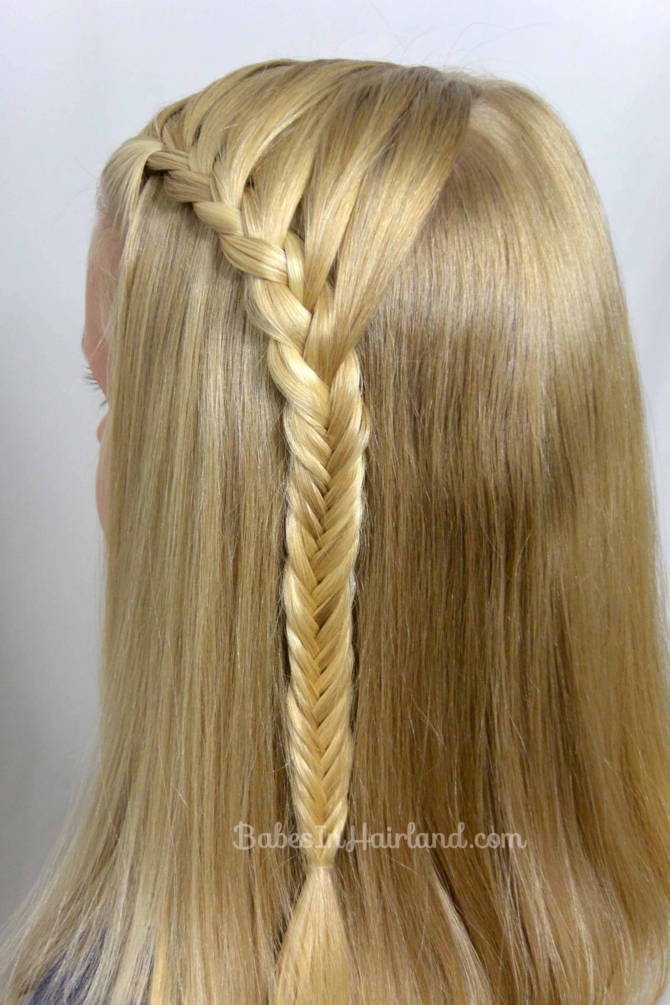 Tremendous Lace Braid Into A Fishbone Braid Babes In Hairland Hairstyles For Men Maxibearus