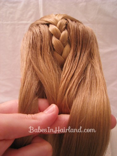 French Braid Cheat from BabesInHairland.com (7)