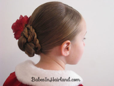 Rope Braided Updo (10)