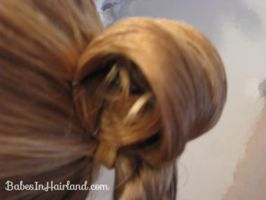 Loop & Twisted Bun (5)