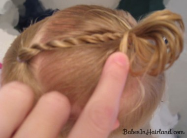 Baby Rope/Twist Braid into Baby Pony (6)