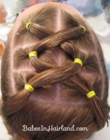 Criss Cross Ponies & Rope Braids (8)