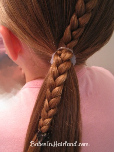 Ponytails and a Braid (7)
