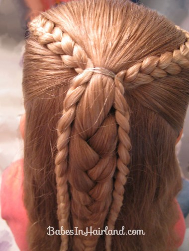 Ponytails and Braids Hairstyle (4)