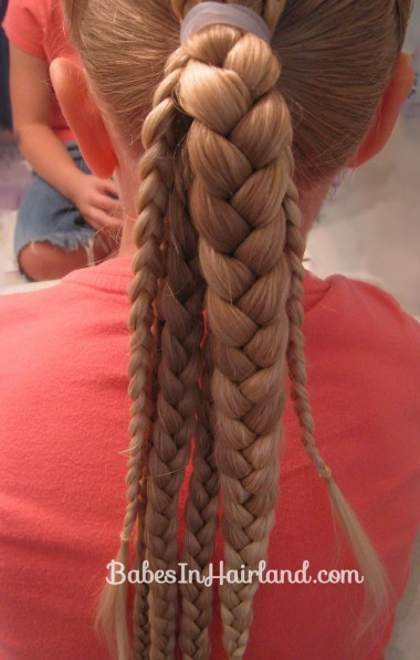 Ponytails and Braids Hairstyle (7)