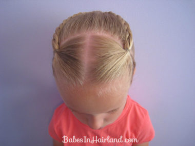 Ponytails and Braids Hairstyle (9)