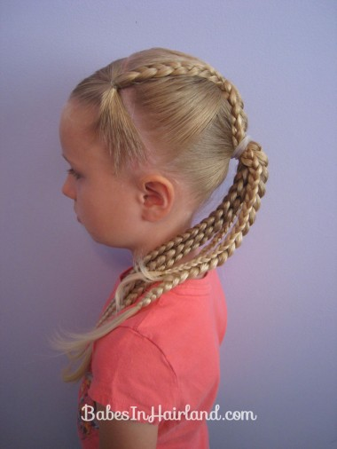 Ponytails and Braids Hairstyle (10)