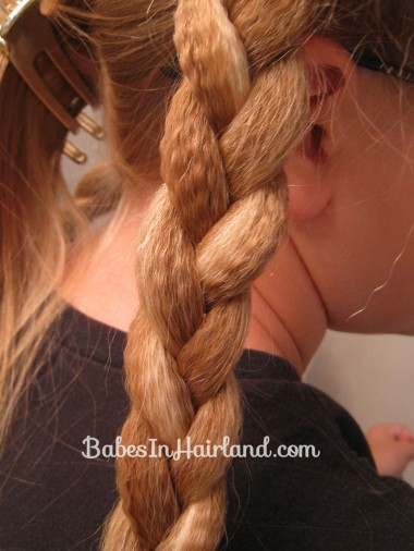 Crimped Braided Pullback (6)