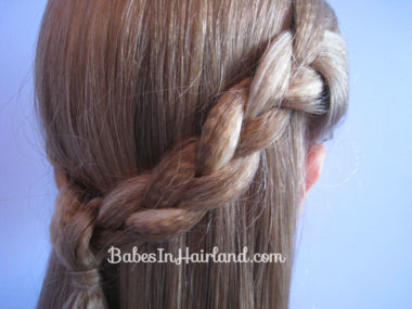 Crimped Braided Pullback (9)