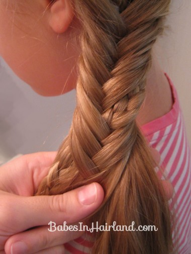 Half French Braid into a Fishbone Braid (7)