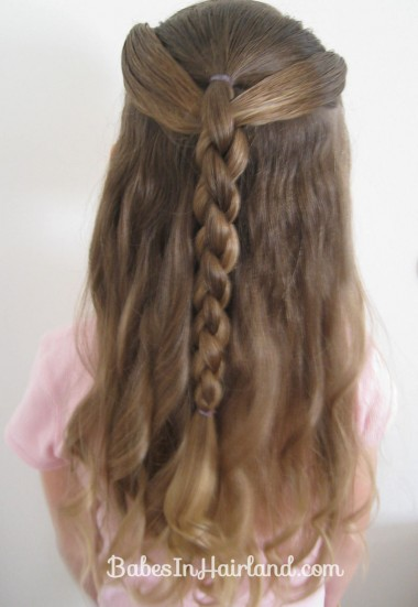 Ponies and 4 Strand Braid (1)