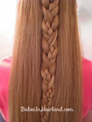 Braided Braid (6)
