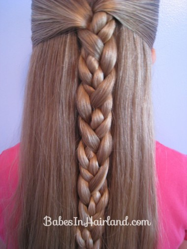 Braided Braid (7)