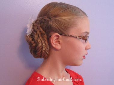 Braids & Fishbone Bun (12)