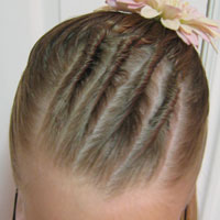 Cornrows and Half Ponytail (6)