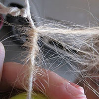 Hair Knotted Up (3)