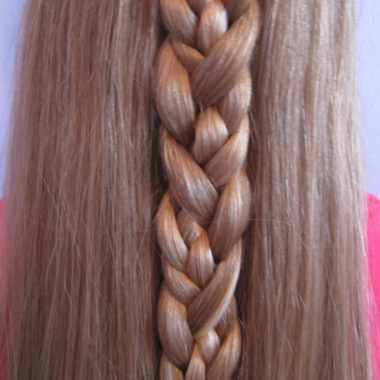 Braided Braid (10)